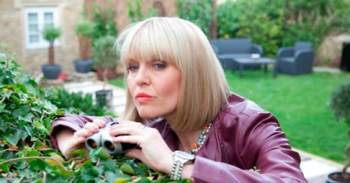 agatha raisin, pas de pot pour la jardinière, mc beaton, albin michel, roman policier anglais, roman policier anglais drôle, the potted gardener, cosy mystery, costwolds, carsely