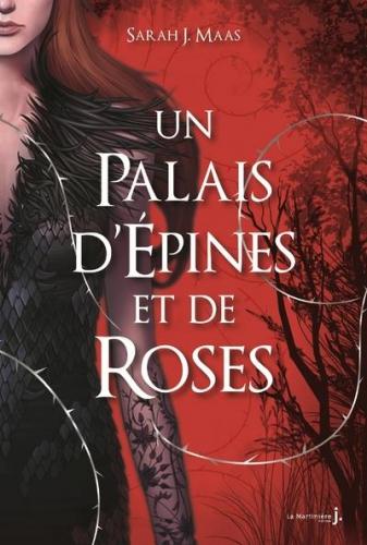 un palais d'épines et de roses.jpg