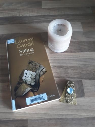salina,laurent gaudé,actes sud,roman,roman français,rentrée littéraire 2018,héroïne,amour,vengeance