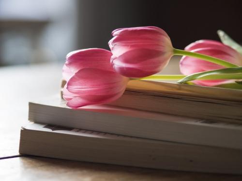 books and tulips.jpg