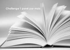 la bibliothèque des coeurs cabossés, katarina bivald, denoël, littérature suédoise, roman feel good