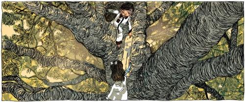 le jardin de minuit, edith, collection noctambule, gallimard, adaptation littéraire, classique anglais, roman jeunesse anglais, tom et le jardin de minuit, philippa pearce