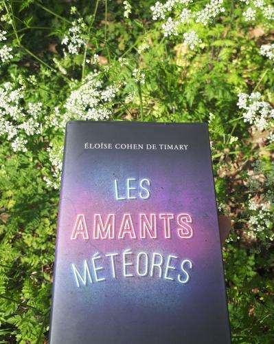 les amants météores, eloise cohen de timary, littérature française, roman, histoire d'amour, roman français, jean-claude lattès