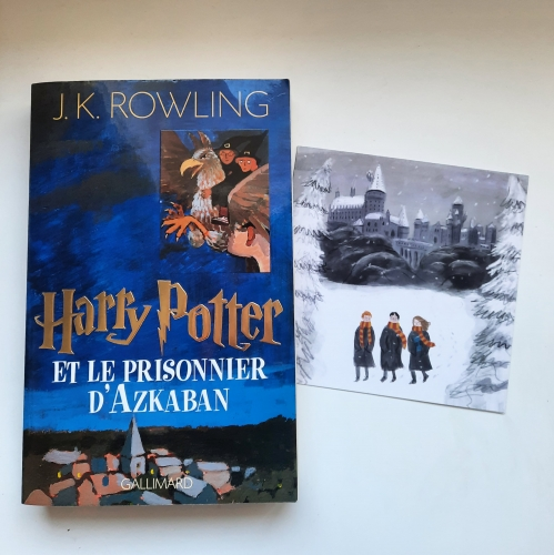 harry potter et le prisonnier d'azkaban, jk rowling, jean-françois ménard, gallimard jeunesse, littérature anglaise, roman anglais, harry potter, sirius black, remus lupin, magie, littérature jeunesse, littérature anglaise, harry potter and the prisonner of azkaban,  littérature adolescente,