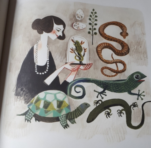 joan procter,la femme qui aimait les reptiles!,patricia valdez,felicita sala,cambourakis,femme,destin de femme,scientifique,reptile,album jeunesse,littérature jeunesse,dragon de komodo