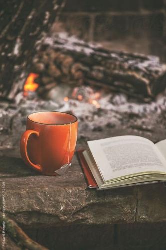 books winter.jpg